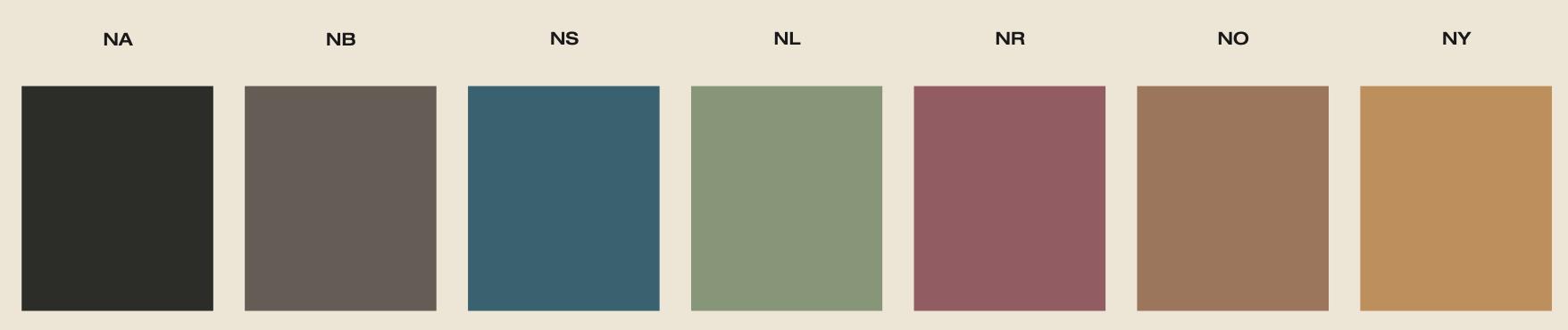 i colori di new york giorgio graesan